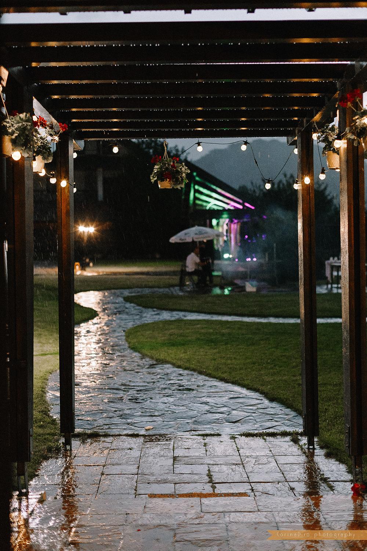Garden party wedding_39